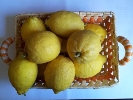 limoni3